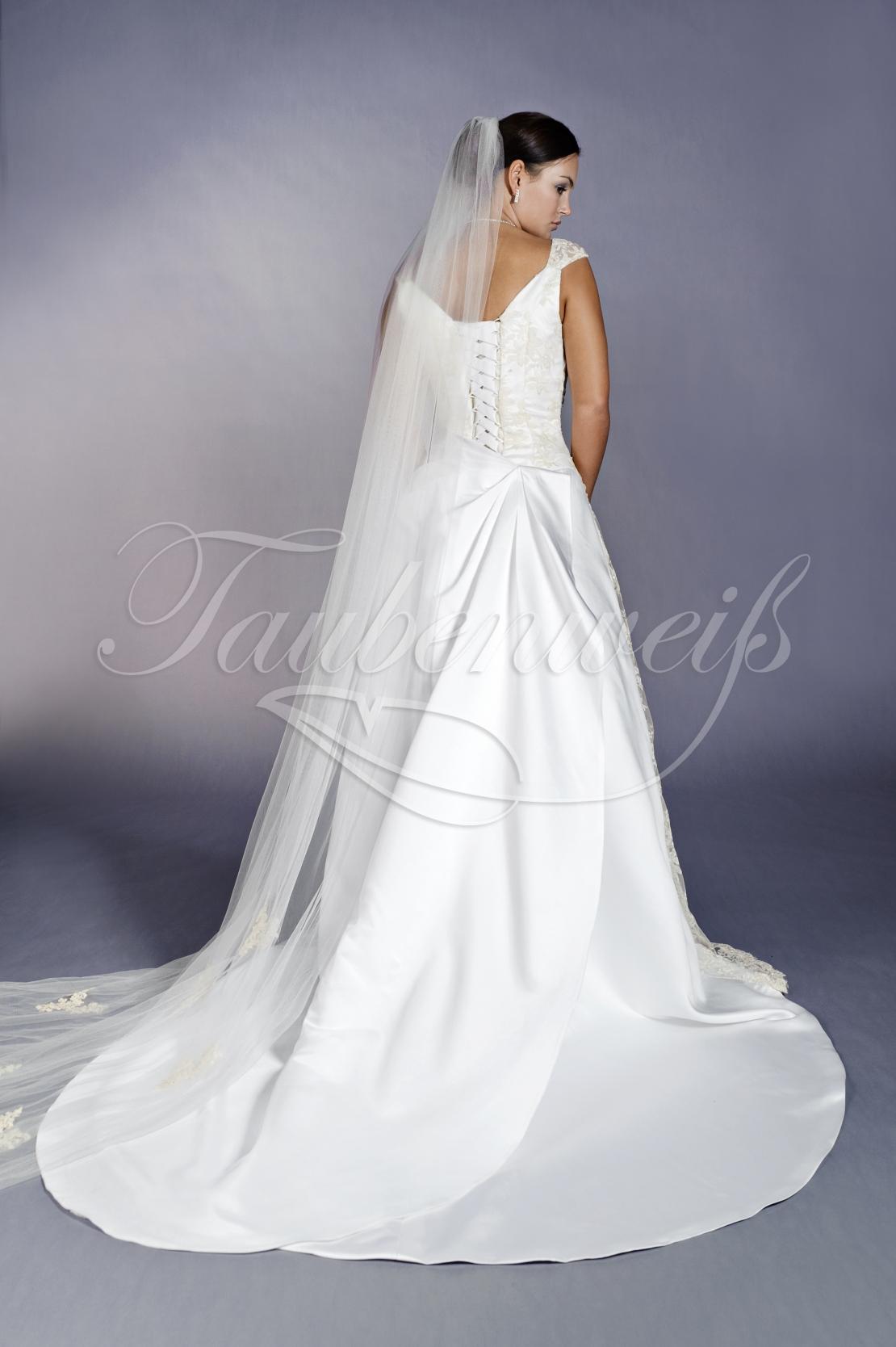 Brautkleid TW0096B 1